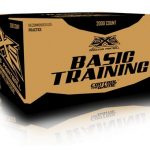 BASIC TRAINING PAINTBALLS